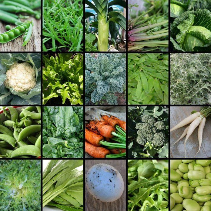 Buy Vegetable Seeds Online In Australia